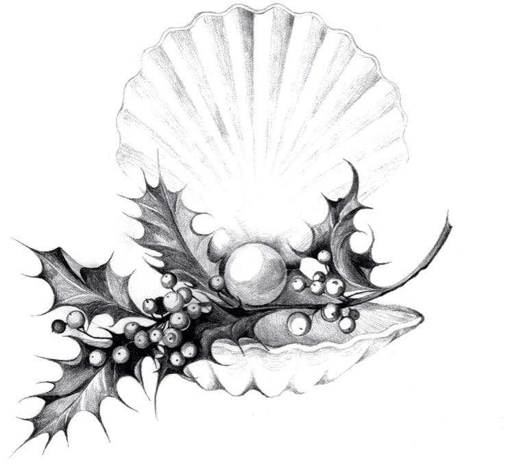 radical-wonders-oyster
